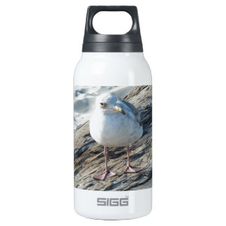 """A Little Birdie Told Me That...."" Template 10 Oz Insulated SIGG Thermos Water Bottle"