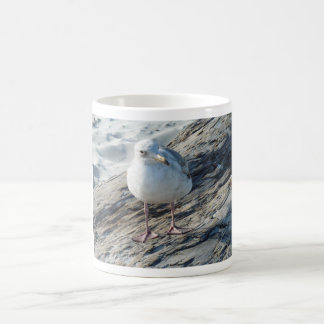 """A Little Birdie Told Me That...."" Template Classic White Coffee Mug"