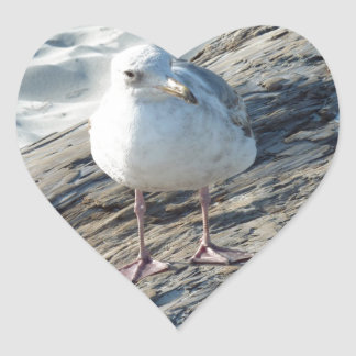 """A Little Birdie Told Me That...."" Template Heart Sticker"
