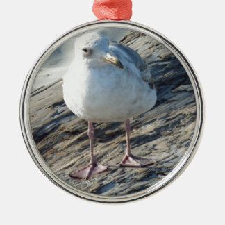 """A Little Birdie Told Me That...."" Template Round Metal Christmas Ornament"