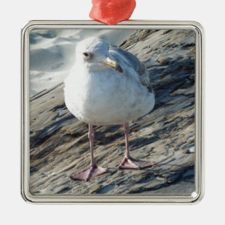 """""""A Little Birdie Told Me That...."""" Template Square Metal Christmas Ornament"""