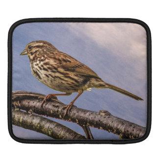 A Little Brown Bird iPad Sleeve