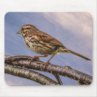 A Little Brown Bird Mouse Pad