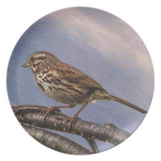 A Little Brown Bird Plates