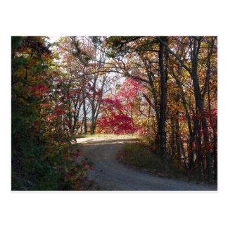 A little color on Knob Hill. Postcard