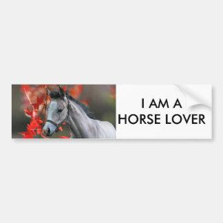 A Little Foal Car Bumper Sticker