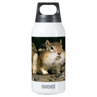 A Little Hard  Work Will Pay Off Insulated Water Bottle