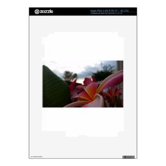 A little of Paradise iPad 3 Skins