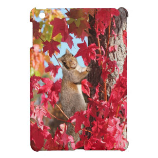 A little squirrelly? cover for the iPad mini