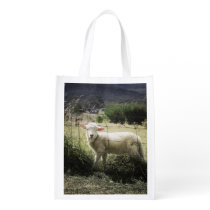 a little white lamb behind a fence in a field grocery bag