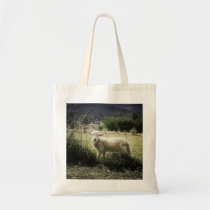 a little white lamb behind a fence in a field tote bag