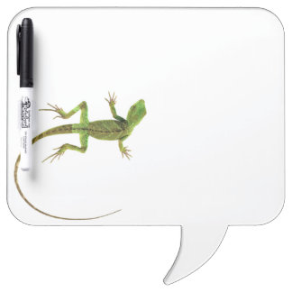 A lizard on pure white ground Dry-Erase board