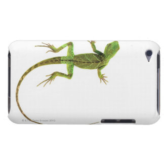 A lizard on pure white ground iPod touch case