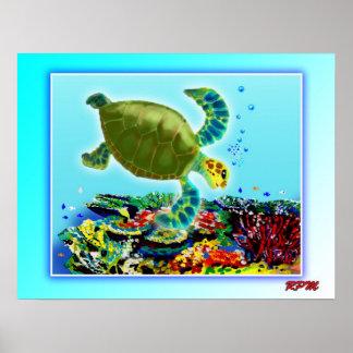 A lo largo de la gran barrera de coral póster