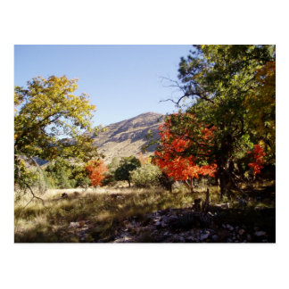 A lo largo del camino - prado tarjeta postal