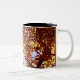 A lo largo del camino (taza) - hojas de arce en taza de dos tonos