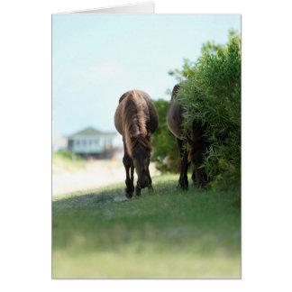 A lo largo del camino trasero tarjeta de felicitación