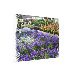 A Local Greenhouse Shows Their Wares Canvas Print