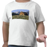 A log cabin and the Sawtooth Mountains in Shirts