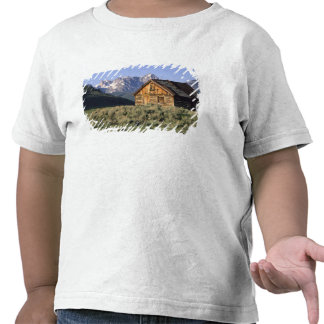 A log cabin and the Sawtooth Mountains in Tee Shirts