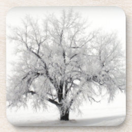 A lone Frostry Tree in the North Dakota Prairie Drink Coaster