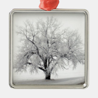 A lone Frostry Tree in the North Dakota Prairie Metal Ornament
