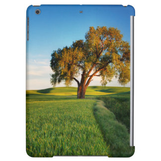A lone tree surrounded by rolling hills of wheat iPad air cover