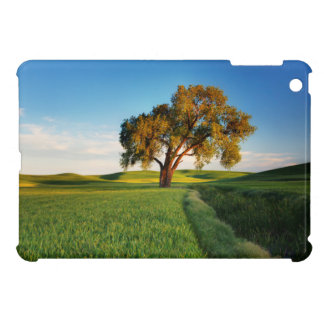 A lone tree surrounded by rolling hills of wheat iPad mini case