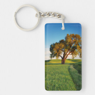 A lone tree surrounded by rolling hills of wheat keychain