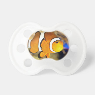 A Lonely Clownfish In An Aquarium BooginHead Pacifier