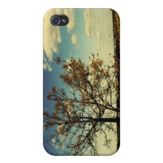 A lonely tree in a yellow dry field iPhone 4/4S cover