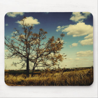 A lonely tree in a yellow dry field mouse pad