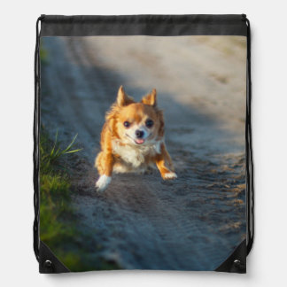 A long haired brown and white Chihuahua Running Drawstring Bag