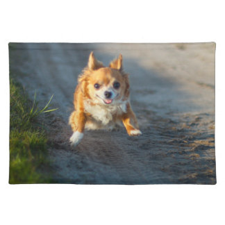 A long haired brown and white Chihuahua Running Placemat