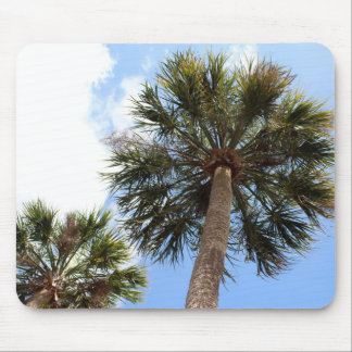 A look up to Paradise Mouse Pad