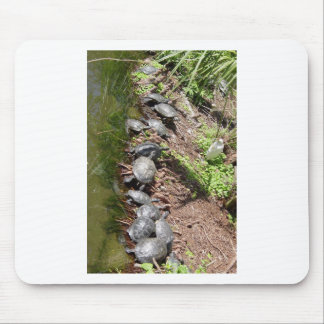 A lot of Turtles Mouse Pad