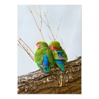 A Lovebird Couple On A Branch Magnetic Card