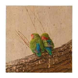 A Lovebird Couple On A Branch Coaster