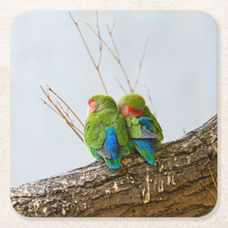 A Lovebird Couple On A Branch Square Paper Coaster