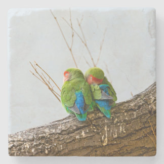 A Lovebird Couple On A Branch Stone Coaster