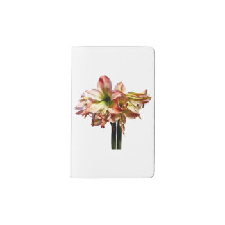 A Lovely Pink and White Amaryllis Pocket Moleskine Notebook