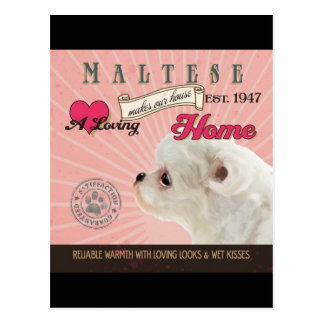 A Loving Maltese Makes Our House Home Postcard