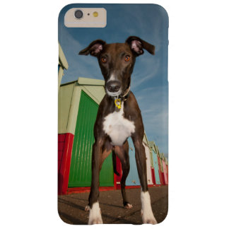 A Lurcher Standing In Front Of Some Beach Huts Barely There iPhone 6 Plus Case