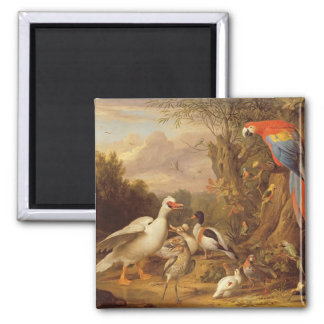 A Macaw, Ducks, Parrots and Other Birds in a Lands 2 Inch Square Magnet