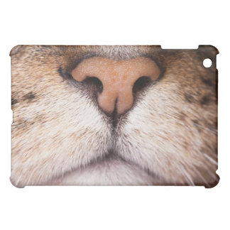 A macro image of a cat's nose and mouth. iPad mini case