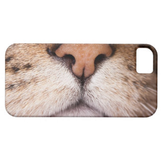 A macro image of a cat's nose and mouth. iPhone SE/5/5s case