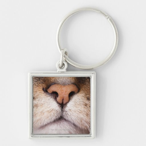 A macro image of a cat's nose and mouth. keychain