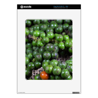 A macro photo of green pepper berries. iPad decal