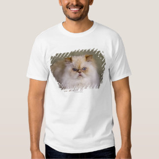 A mad, upset, reclining Flame Point Himalayan T-Shirt
