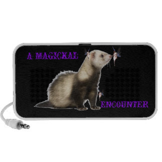 A MAGICAL ENCOUNTER TRAVELLING SPEAKER